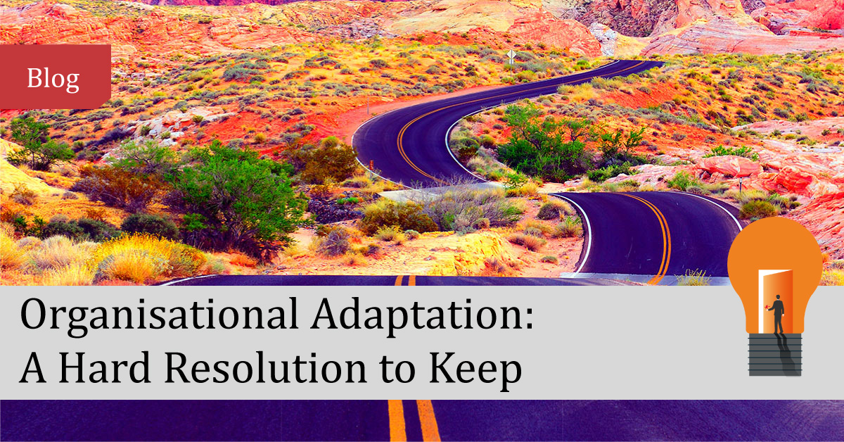 Organisational Adaptation: A Hard Resolution to Keep